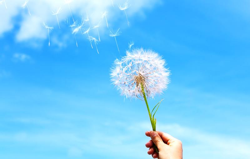 仏教の教え「空」って何?|何のためにあるの?どう活かせるの?