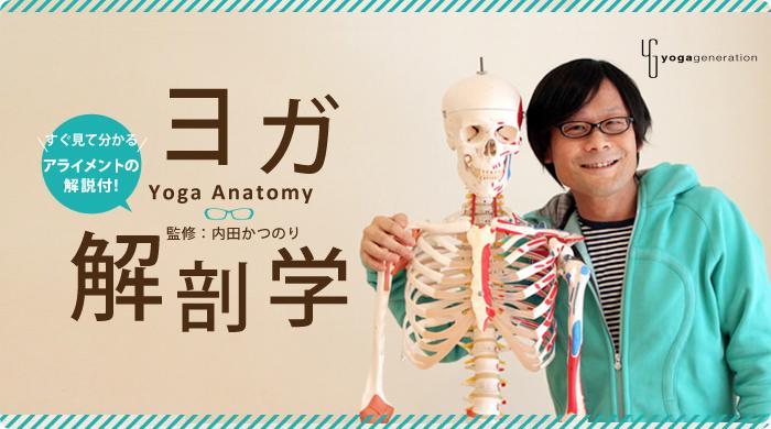 ヨガ解剖学 すぐ見て分かるアライメント解説付! 監修:内田かつのり